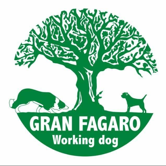 Gran Fagaro